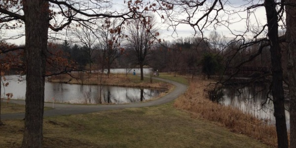 rogers lakewood park