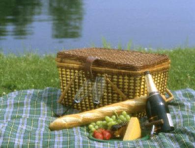 parks and recreation lake picnic e1584718744867