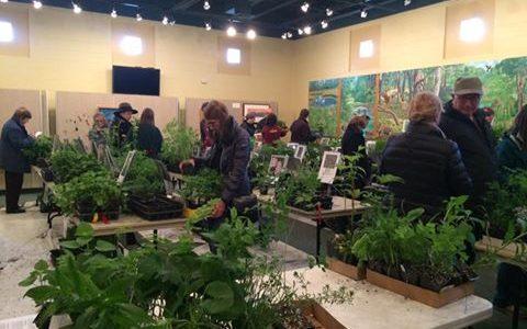 Indiana Dunes Native plant sale chesterton indiana