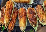schererville corn roast schererville indiana chamber of commerce
