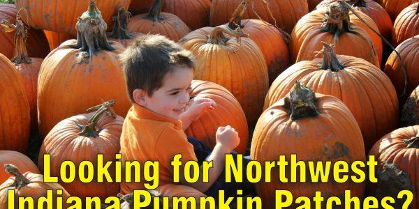 northwest indiana Pumpkin Patches