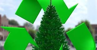 recycle christmas trees help the environment porter county indiana