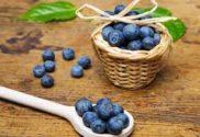 blueberry picking in northwest indiana