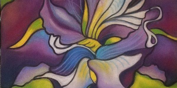 Robyn Feeley iris miller beach creative arts district