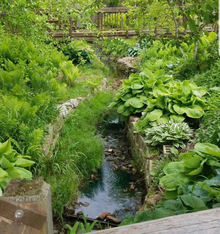exotic plantlife hiking nwindiana gardening e1582985345855