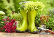 Top Gardening Tips for a Fruitful Season