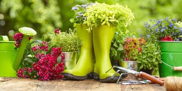 Top Gardening Tips for a Fruitful Season