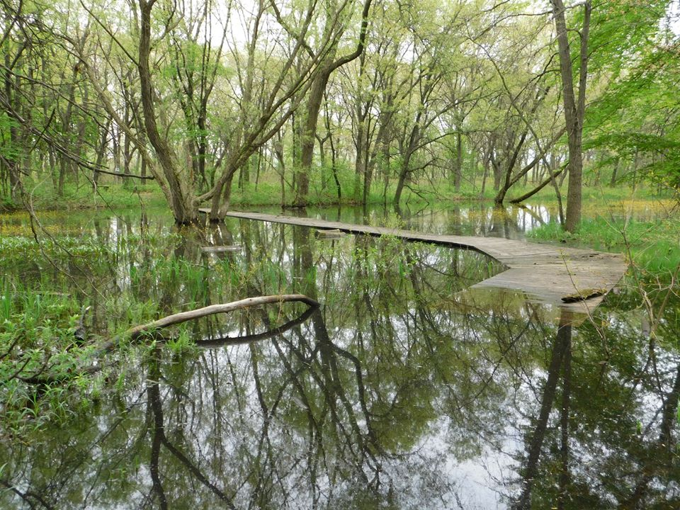 Gibson Woods nature preserve hammond indiana