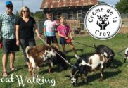 goat walking for family fun in valparaiso indiana creme de la crop
