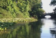 stone lake pine lake laporte indiana