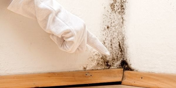 These Are the Home Improvement Projects You Should Never DIY