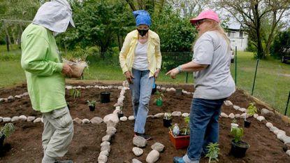 medicinal garden kankakee historical society kouts indiana