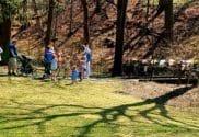 friendship gardens easter bunny michigan city indiana