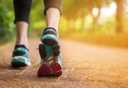 Indiana hoosiers get walkin app from purdue university