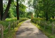The Best Bike Trails in the Chicago Area