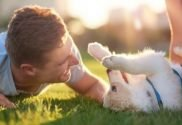 Puppy Love: Signs That Prove Your Dog Loves You